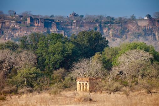 Ranthambore National Park「Hunting Lodge and Fort at Ranthambhore, India」:スマホ壁紙(12)