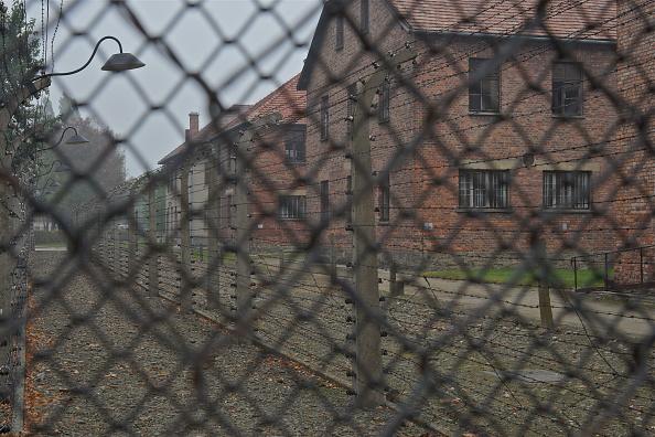 Link - Chain Part「Auschwitz-Birkenau Memorial And Museum」:写真・画像(14)[壁紙.com]