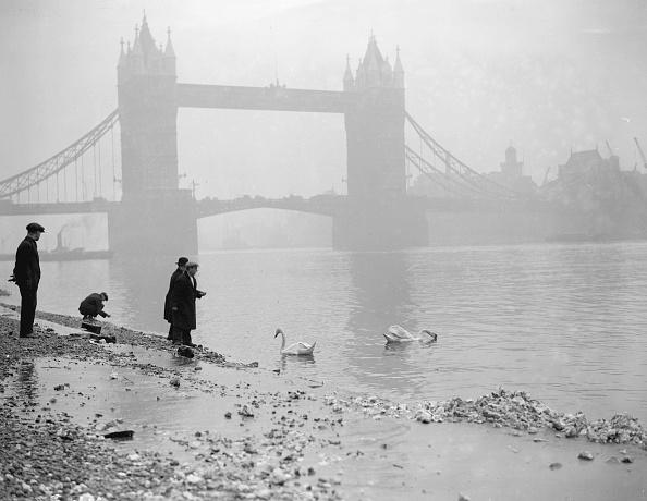 Fog「River Thames」:写真・画像(14)[壁紙.com]