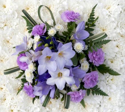 カーネーション「ライラックの花の背景に白の菊」:スマホ壁紙(13)