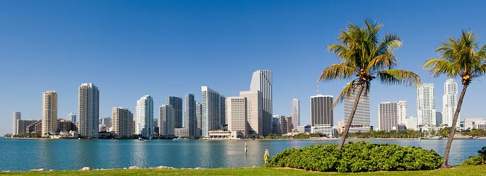 Panoramic「Downtown Miami City Skyline USA」:スマホ壁紙(17)