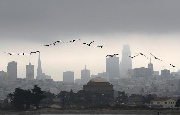 ヒューマンインタレスト「San Francisco Weather」:写真・画像(2)[壁紙.com]