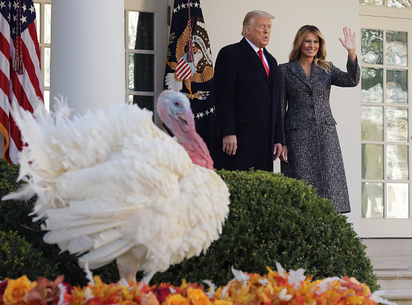 Turkey Meat「President Trump Pardons National Thanksgiving Turkey At The White House」:写真・画像(5)[壁紙.com]