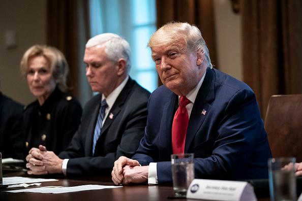 Drew Angerer「Trump, Coronavirus Task Force Members Meet With Pharmaceutical Executives」:写真・画像(15)[壁紙.com]