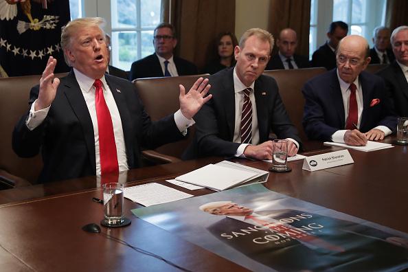 Wilbur Ross「President Trump holds Cabinet Meeting At The White House」:写真・画像(13)[壁紙.com]