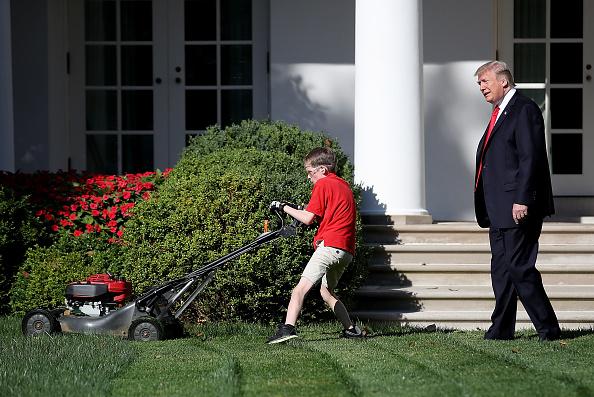 イネ科「President Accepts Offer From  11-Year-Old Virginia Boy To Mow Lawn Of White House」:写真・画像(6)[壁紙.com]