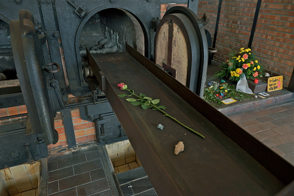 Rose - Flower「Crematorium Ovens At Buchenwald」:写真・画像(19)[壁紙.com]