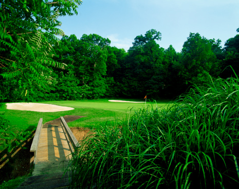 Sand Trap「Footbridge on golf course」:スマホ壁紙(17)