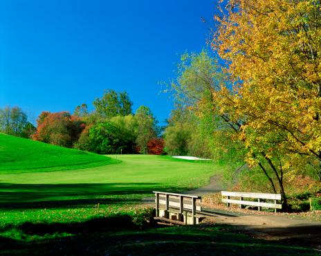 Sixth Hole「Footbridge on golf course」:スマホ壁紙(5)