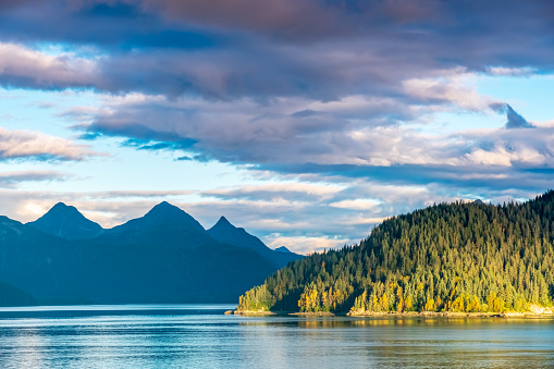 Extreme Terrain「Alaskan Fjord with Sunlit Forested Headland」:スマホ壁紙(8)