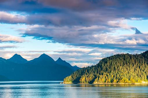 Glacier Bay National Park「Alaskan Fjord with Sunlit Forested Headland」:スマホ壁紙(5)