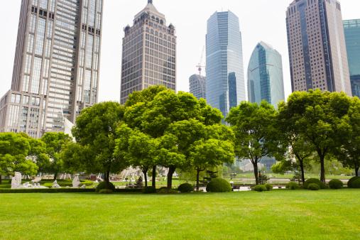 Shanghai「city park」:スマホ壁紙(1)