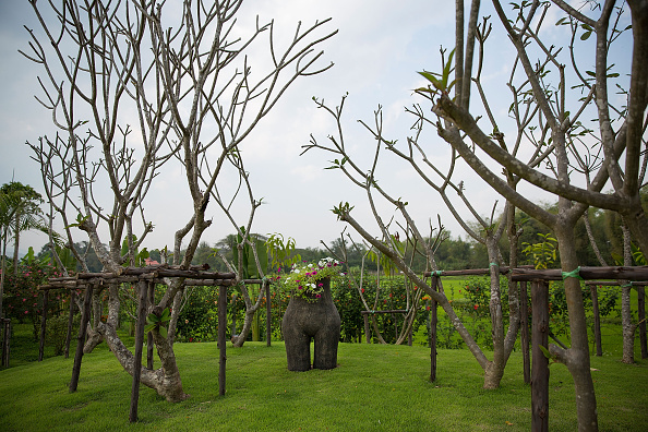 茶室「Chiang Mai's Erotic Garden Opens To The Public」:写真・画像(11)[壁紙.com]