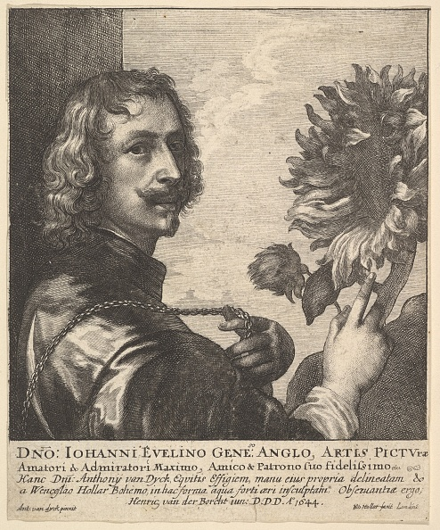 Sir Anthony Van Dyck「Sir Anthony Van Dyck With A Sunflower」:写真・画像(3)[壁紙.com]