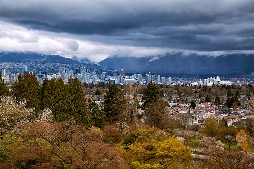 桜「バンクーバー都市の景観、カナダの春の景色」:スマホ壁紙(7)