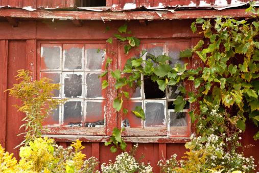 Obsolete「Barn window with foliage」:スマホ壁紙(1)