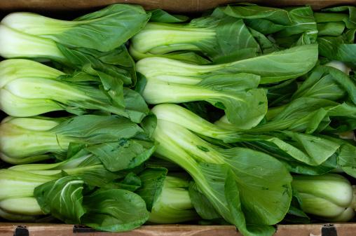Bok Choy「Many green, leafy organic bok choy laying in rows. 」:スマホ壁紙(9)