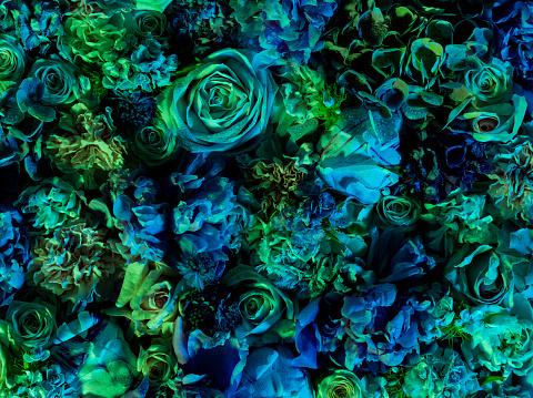 Floral Pattern「Vibrant floral arrangement, full frame」:スマホ壁紙(17)