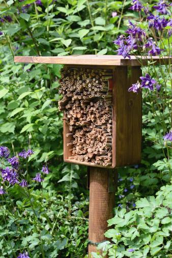Squatter「Insektenhotel - hotel insect shelter」:スマホ壁紙(12)