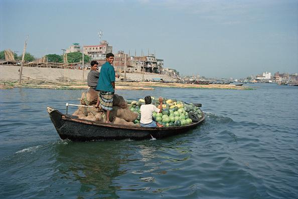 スイカ「Bangladesh River」:写真・画像(17)[壁紙.com]