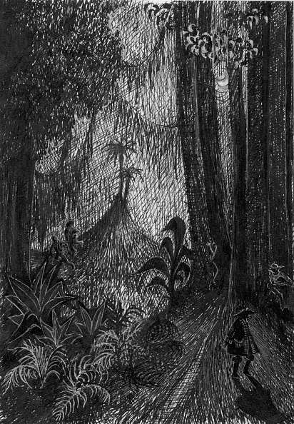 Shadow「Pirate In The Rainforest」:写真・画像(12)[壁紙.com]