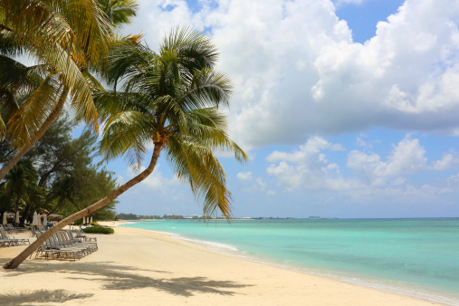 Cayman Islands「Caribbean: Dream Beach」:スマホ壁紙(6)