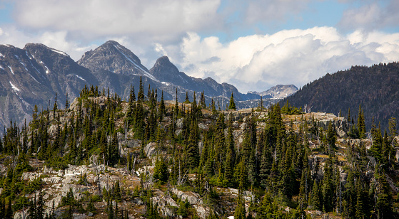 Pemberton「Mountain with trees,Pemberton, British Columbia,Canada」:スマホ壁紙(15)