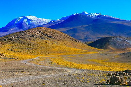 Bolivian Andes「Mountain winding Road to snowcapped Volcanic landscape - Atacama Desert – Chile」:スマホ壁紙(14)