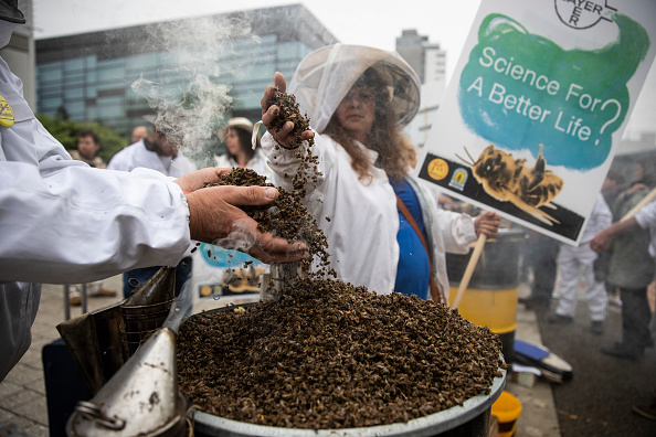 Insecticide「Bayer AG Holds Annual Shareholders Meeting」:写真・画像(7)[壁紙.com]