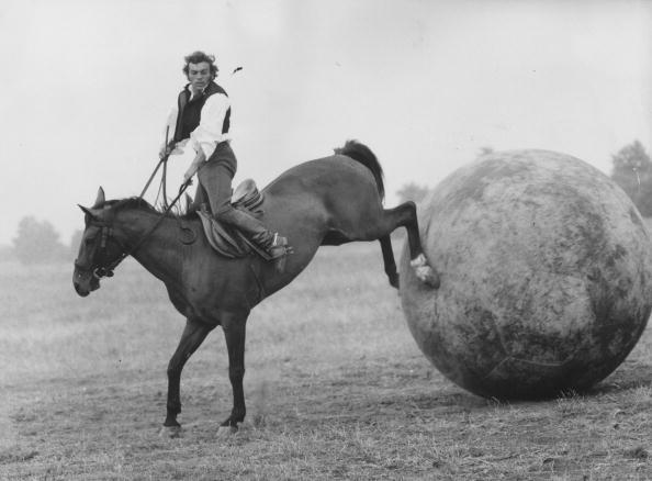 Kicking「Giant Horse Football」:写真・画像(5)[壁紙.com]