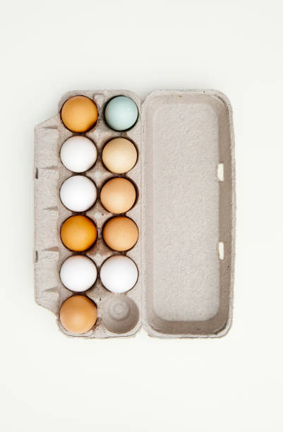 Colored eggs in egg carton:スマホ壁紙(壁紙.com)
