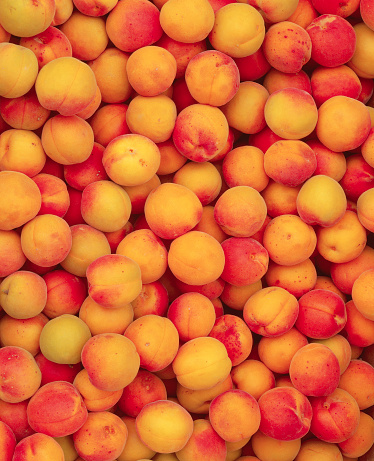Apricot「Apricots」:スマホ壁紙(19)