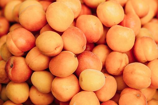 Apricot「Apricots」:スマホ壁紙(8)