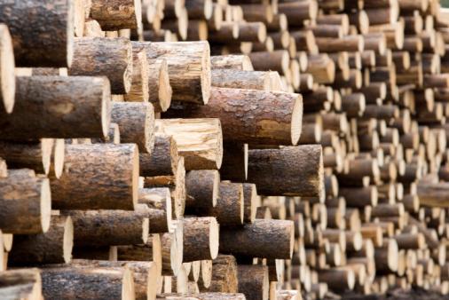 Deforestation「Lots of log ends」:スマホ壁紙(7)