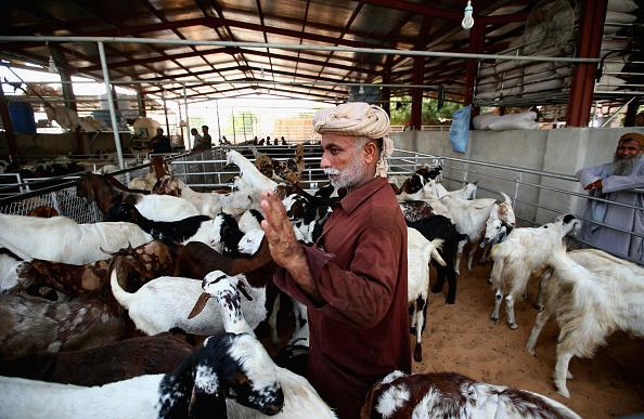 Francois Nel「Muslims Celebrate Eid Al- Adha In Duabi」:写真・画像(19)[壁紙.com]