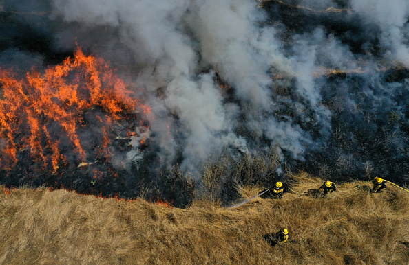 Environment「Firefighters Prepare Ahead Of Wildfire Season With Controlled Burn Training Session」:写真・画像(15)[壁紙.com]