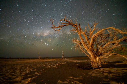 Namib-Naukluft National Park「Milky way seen from desert, Deadvlei, Namibia, Africa」:スマホ壁紙(16)