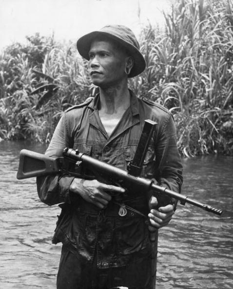 Tropical Rainforest「Iban Ranger」:写真・画像(19)[壁紙.com]