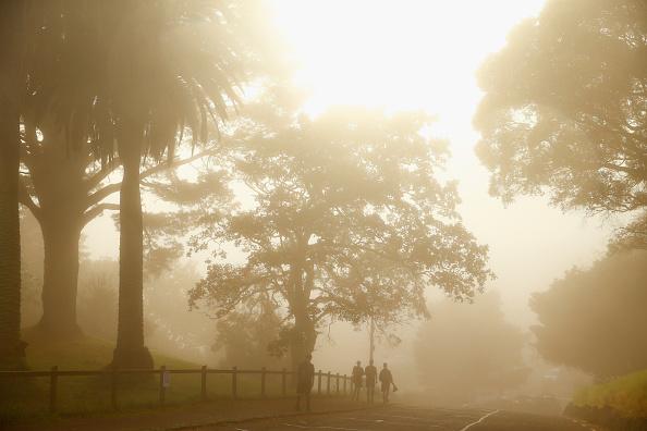 Weather「Fog Settles Around Auckland City」:写真・画像(14)[壁紙.com]