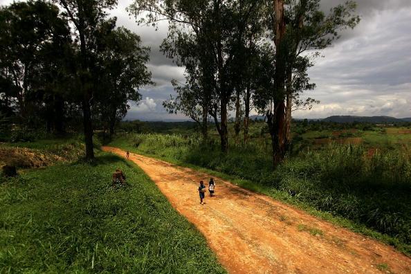出来事「Lack of Roads in D.R. Congo Precludes Development」:写真・画像(13)[壁紙.com]