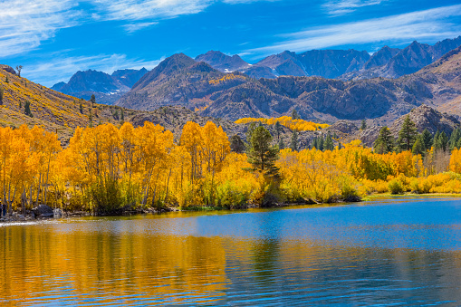 Aspen Tree「Bishop Creek small pond in Autumn, Sierra Nevada Range, CA.」:スマホ壁紙(19)