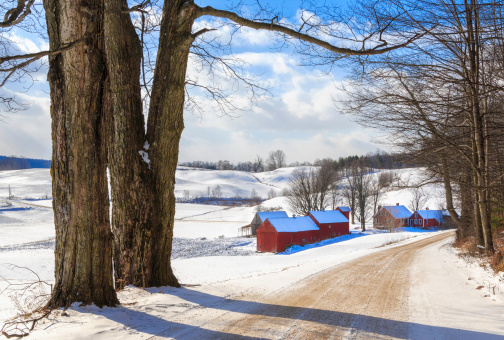 Sugar maple「snowy New England countryside in the winter」:スマホ壁紙(12)