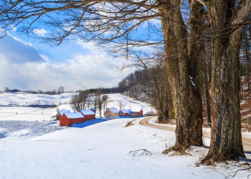 Sugar maple「snowy New England countryside in the winter」:スマホ壁紙(11)