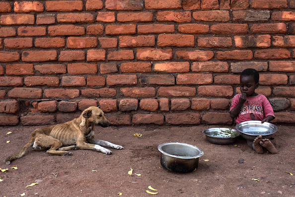 Southern Africa「Food Shortages In Malawi As El Nino Causes Damaging Drought」:写真・画像(18)[壁紙.com]