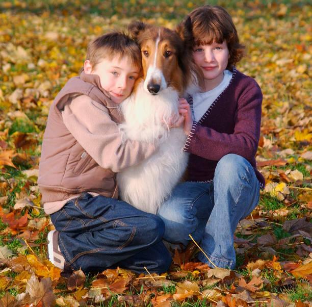 Lassie Photocall:ニュース(壁紙.com)