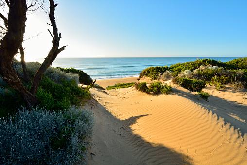 90マイルビーチ「Dunes on the Beach」:スマホ壁紙(9)