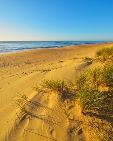 90マイルビーチ「Dunes on the Beach」:スマホ壁紙(17)