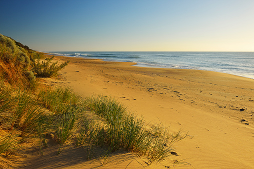90マイルビーチ「Dunes on the Beach」:スマホ壁紙(11)