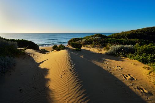 90マイルビーチ「Dunes on the Beach」:スマホ壁紙(12)