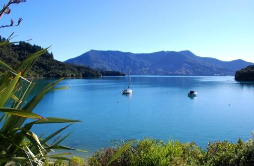 New Zealand「Bay on the Kenepuru Sound, Marlborough」:スマホ壁紙(19)